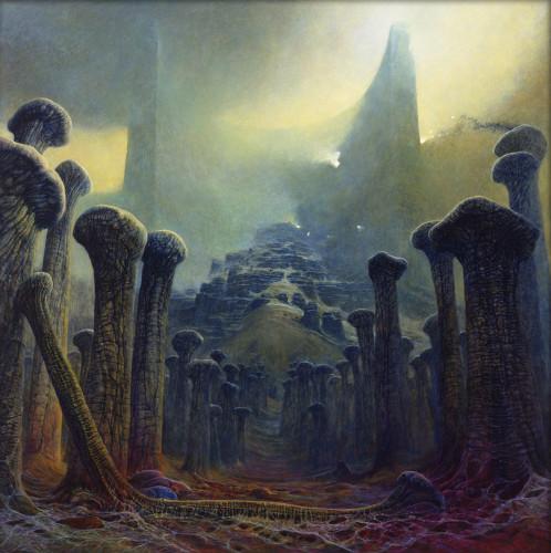 Овраг со скрещенными костями 1981 г.