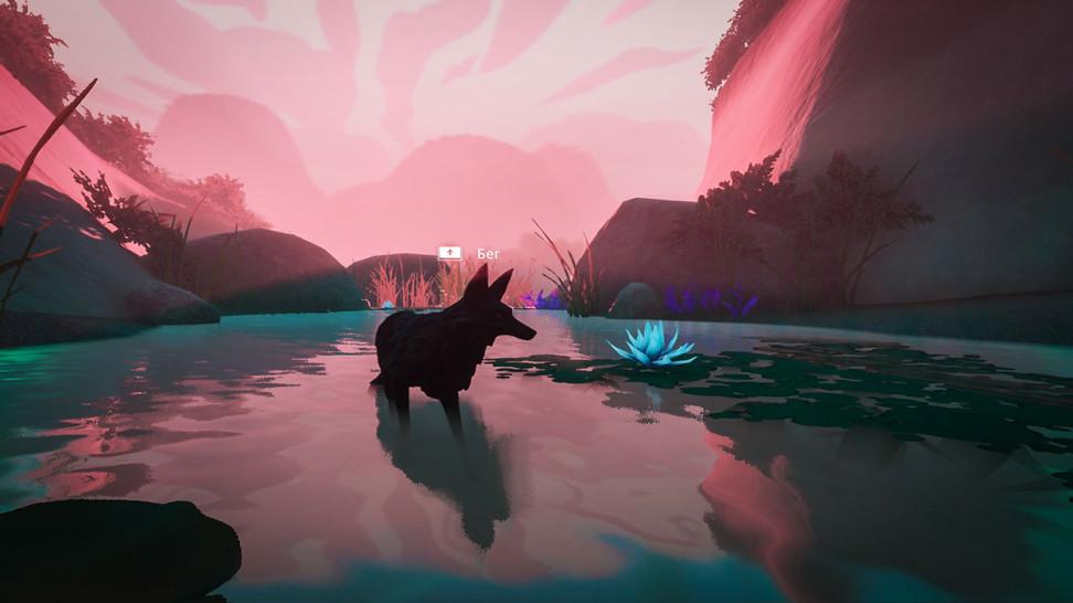 Животные виграх: происхождение видов икуда заводит фантазия гейм-дизайнеров