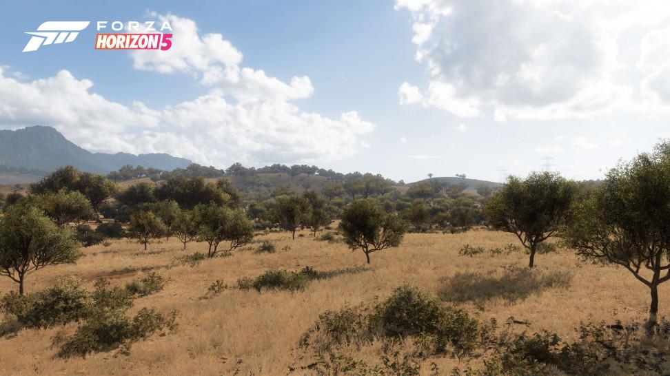 Экскурсия по завораживающим природным зонам в Forza Horizon 5