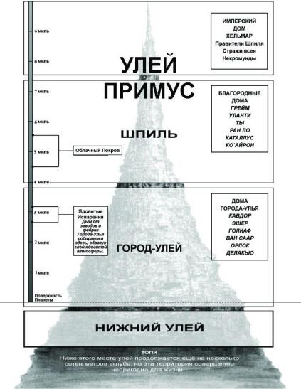 Строение города-улья