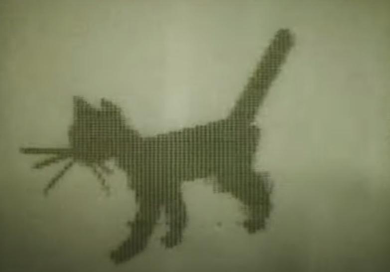 Кадр из короткометражки «Кошечка» 1968 год