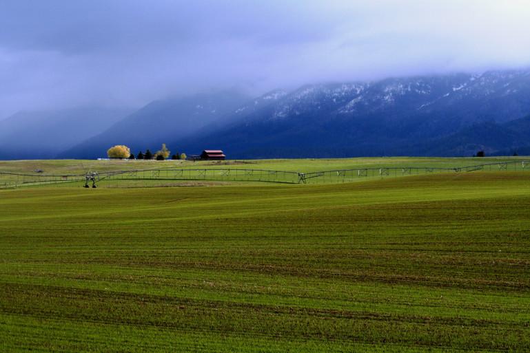 Вот так вреальной жизни выглядит регион Иоанна. Почвы вэтих местах очень плодородные из-за большого содержания гумуса.