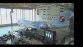 Корейские авиалинии (событие)