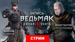The Witcher 3: Wild Hunt: Wild Hunt — Прохладный Скеллиге летним вечером
