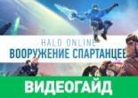 Оружие в Halo Online