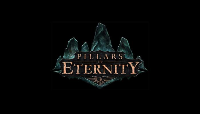Обои по игре Pillars of Eternity: The White March