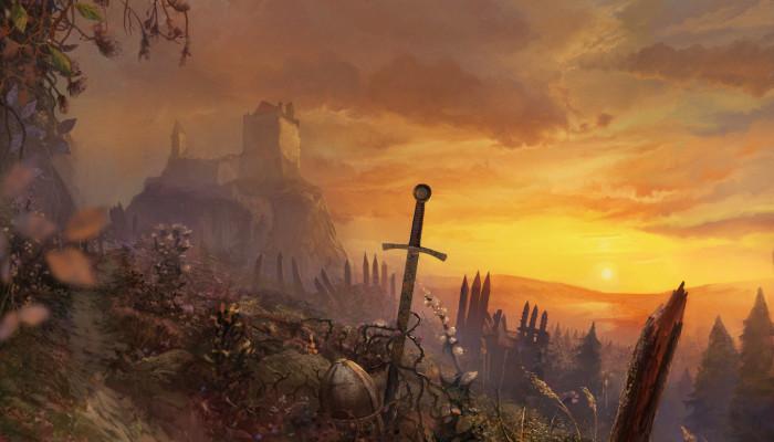 к игре Witcher, The