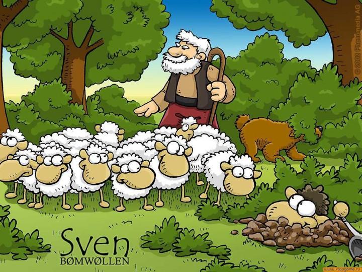 Настольная игра трахни овечку