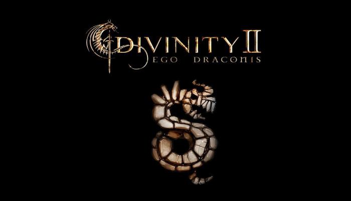 к игре Divinity 2: Ego Draconis