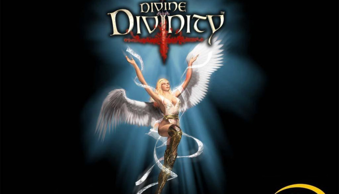 к игре Divine Divinity